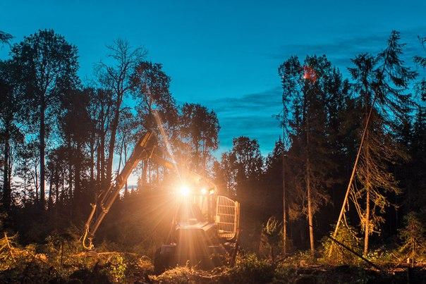Лесозаготовительная техника на Северо-Западе