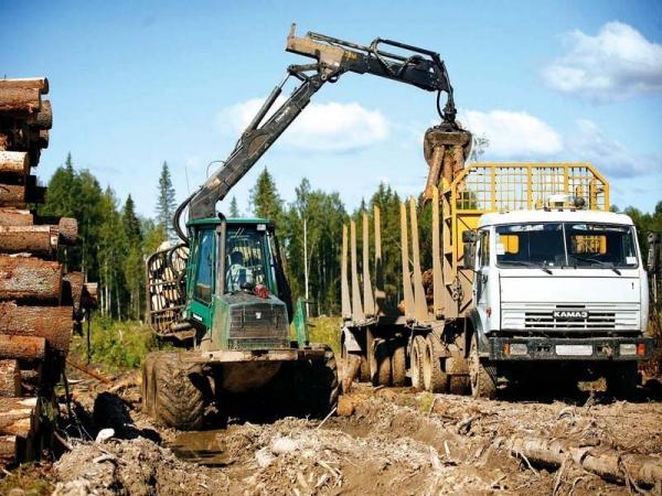 Лесозаготовительная техника Урал